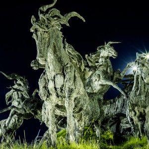 estampida de caballos viajar por mexico