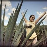 Pueblo Mágico Pinos Zacatecas Viajar por México
