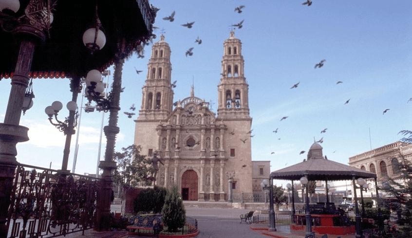 Chihuahua viajar por mexico